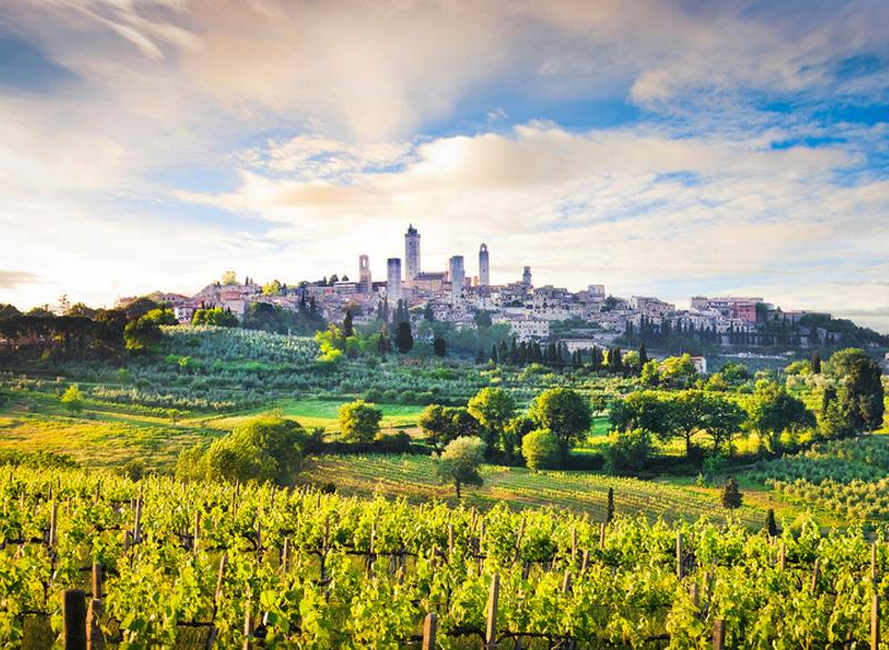 Visite guidate a San Gimignano